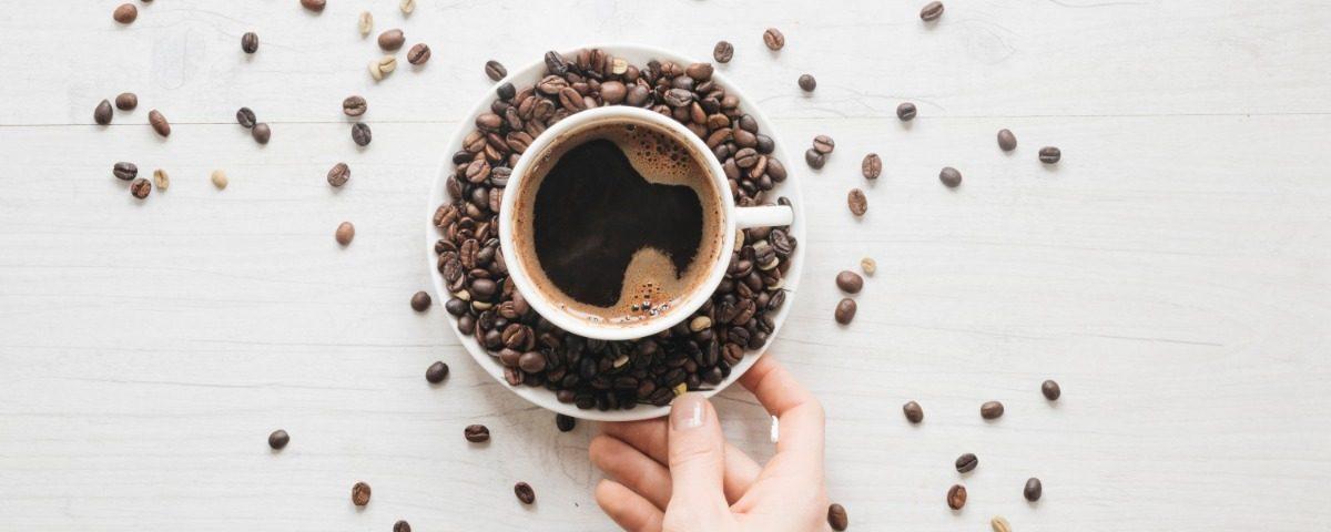A arte de dominar o café conheça a importância do trabalho do Barista na produção de café